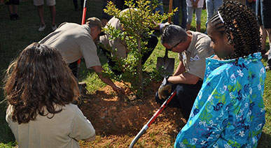 Limestone donating and planting a tree